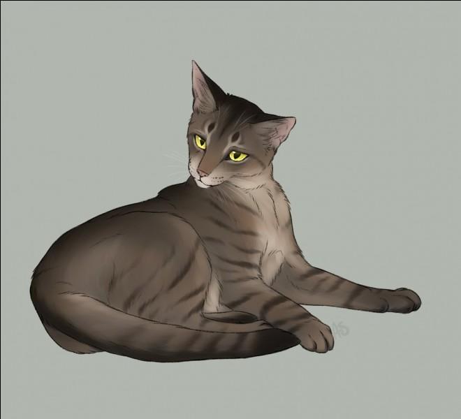 Je suis un chef horrible, j'ai même fait en sorte que des chatons de moins de 6 lunes soient apprentis. Je suis :