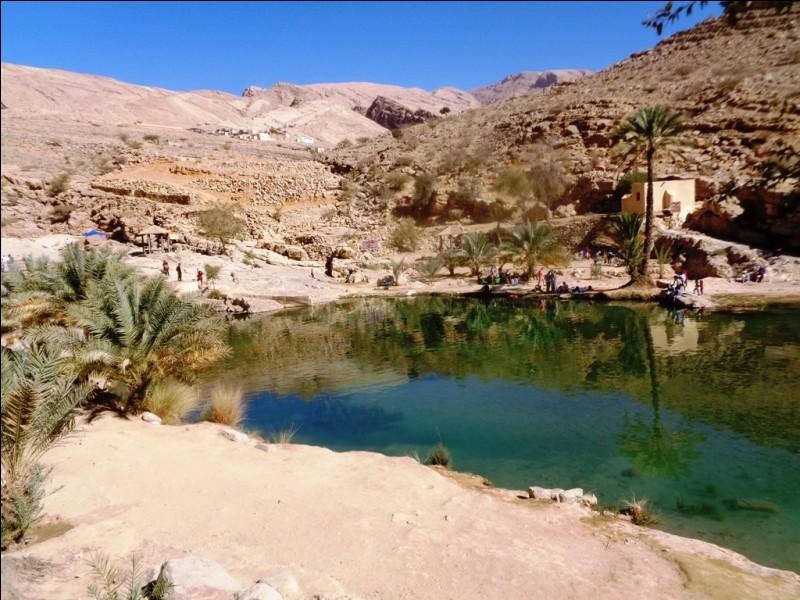 Que peut-on affirmer concernant les flux migratoires à Oman ?