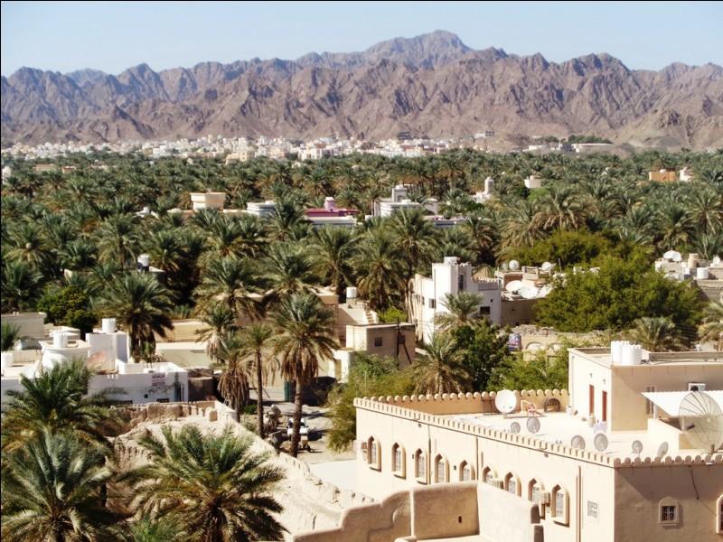 Quelle ville de l'intérieur des terres, ancienne capitale à l'époque de l'imamat, célèbre pour souk et son majestueux fort, est considérée comme le centre culturel et religieux du pays ?