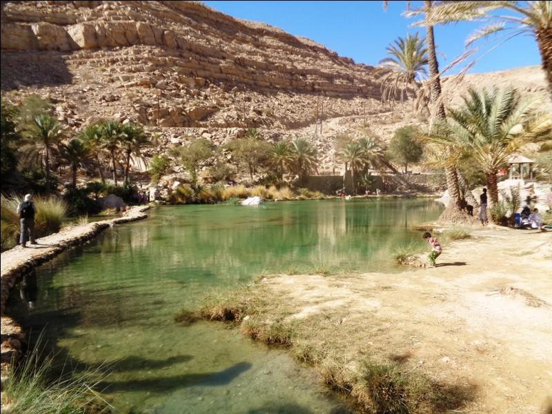 Oman est, entre autres, réputé pour ses wadis, mais qu'est-ce qu'un wadi ?