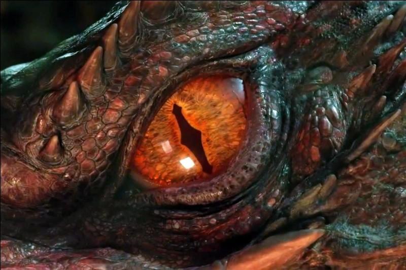 Tu es un dragon. Que préfères-tu, sur ton apparence ?