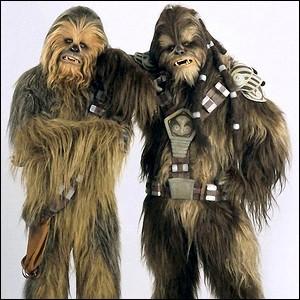 """De quelle planète sont les """"Wookies"""" tels que Chewbacca ?"""
