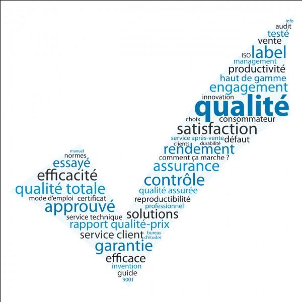 Laquelle de ces qualités te représente le plus ?
