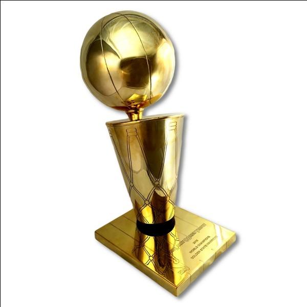 Qui a gagné le titre NBA en 2013 ?