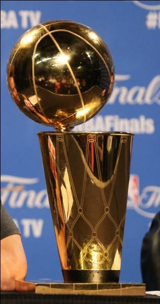 Qui a gagné le titre NBA en 1998 ?