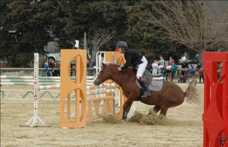 Je suis un obstacle qui fait peur aux chevaux, je suis fréquemment utilisé en concours ... que suis-je ?