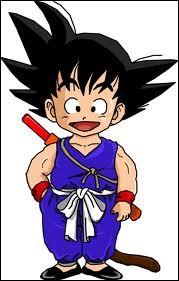 Combien de maîtres enseignent les arts martiaux à Goku ?