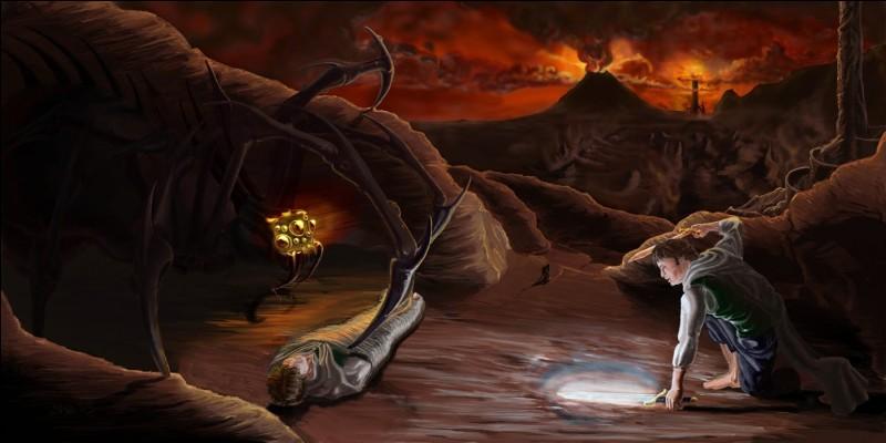 Quelle araignée Frodon affronte-t-il ?