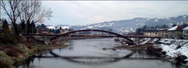 Dans quel pays d'Europe se situe la ville de Zavidovici ?