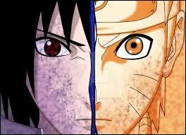 "Que dit Naruto à Sasuke pendant leur combat à la fin de ""Naruto Shippuden"" ?"