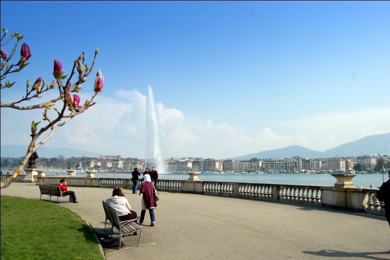 Genève se situe en :