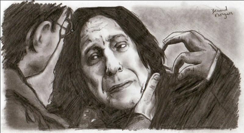 Après la mort de Severus Rogue, à qui appartient cette baguette ?