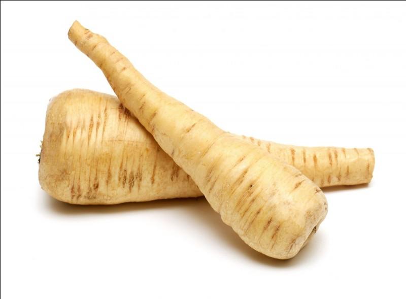 Quel est le nom de ces légumes ?