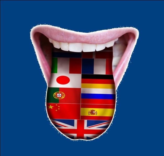 Dans combien de langues officielles sont écrits les textes promulgués par l'Union européenne ?