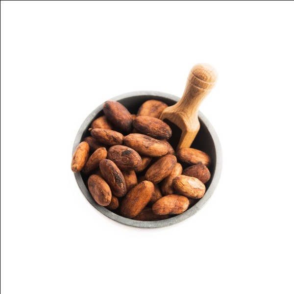 De quand daterait la première utilisation de la fève de cacao ?
