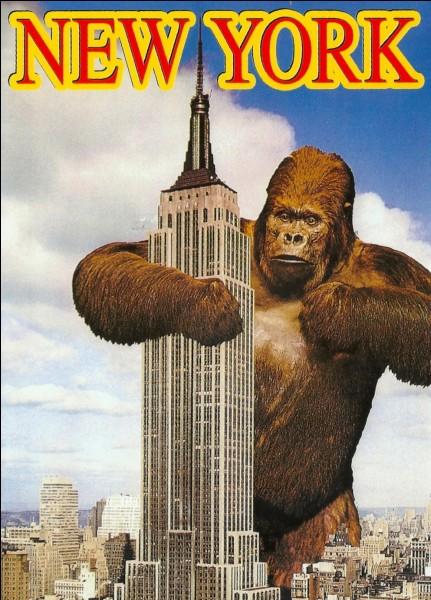 En quelle année le gratte-ciel apparaît-il pour la première fois dans un film ?
