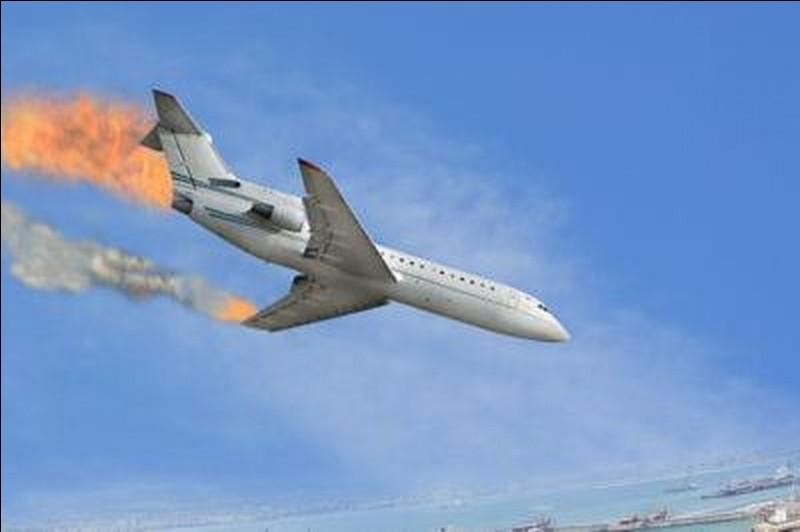 Le Boeing 767 a été retiré de la vente car plusieurs fois des ailes s'étaient décrochées en plein vol.