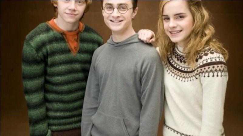 Avec qui se marient Harry et Hermione ?