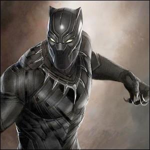 Black Panther : Le héros est l'héritier du trône ...
