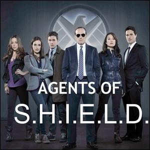 """Dans la série Agents of Shield"""", Qui dirige l'équipe ?"""