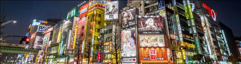 Comment est appelée la rue où sont disposés des magasins de jeux vidéo et de cosplays ?