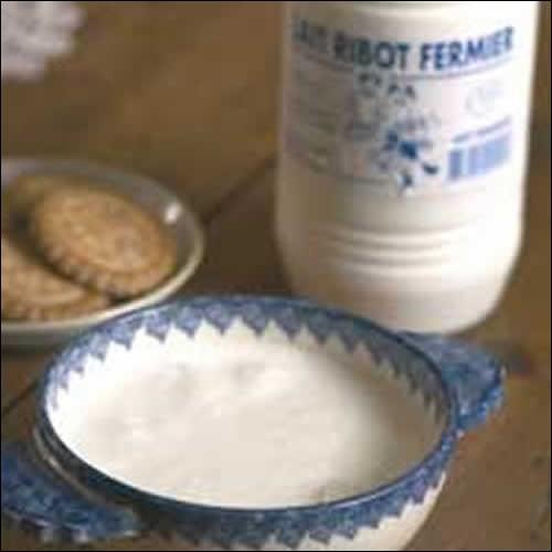 Le lait ribot peut être bu comme du lait normal ou bien dans un bol avec une petite galette dedans. Mais qu'est-ce que c'est en fait, le lait ribot ?