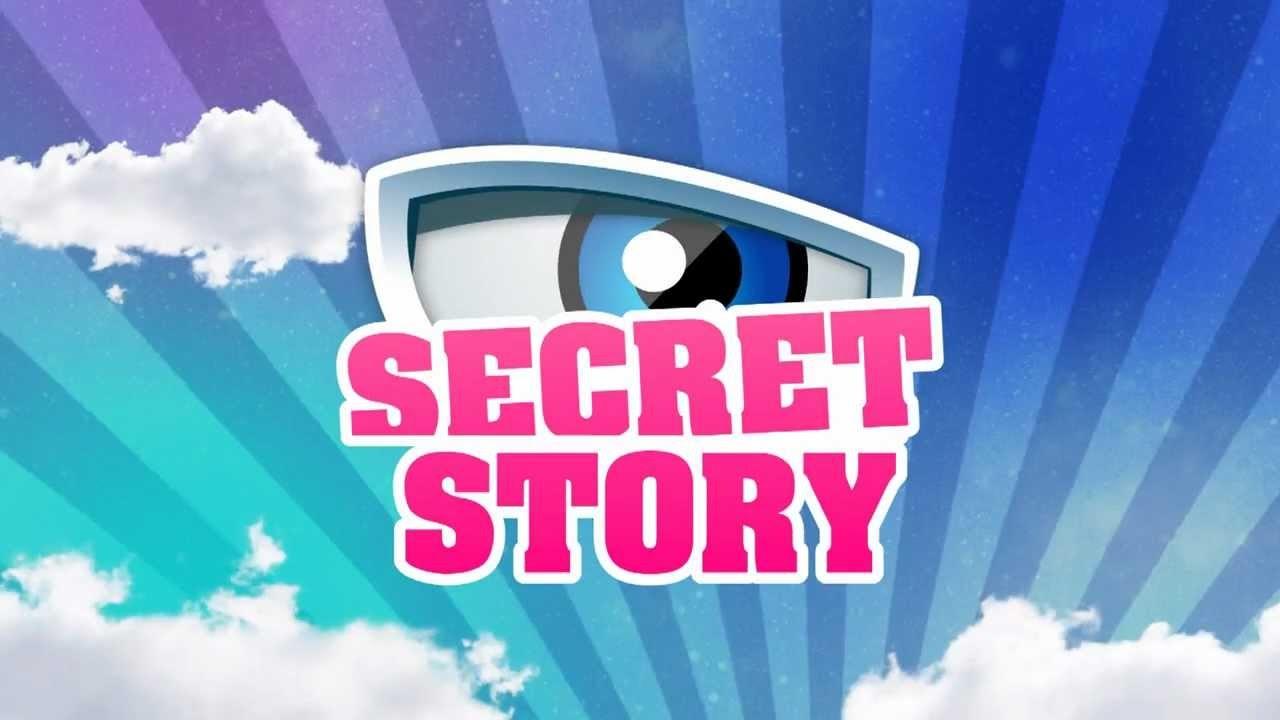 Quel est ton candidat de 'Secret Story 11' attitré ?