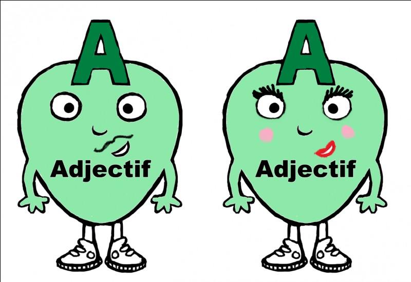 L'adjectif qui te décrit est...