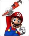 Mais quel métier font Mario et son frère ?