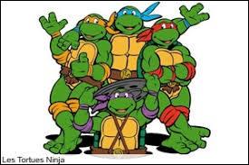 Nous sommes les tortues ninjas, comment s'appelle notre ami avec le bandeau rouge ?