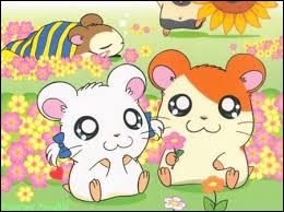 Nous sommes de mignons petits hamsters, je suis le personnage principal, qui suis-je ?