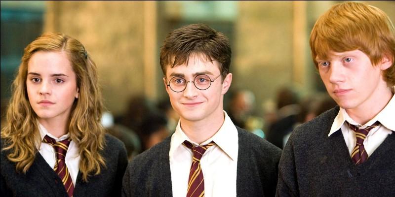"Qui es-tu dans ""Harry Potter"" ?"