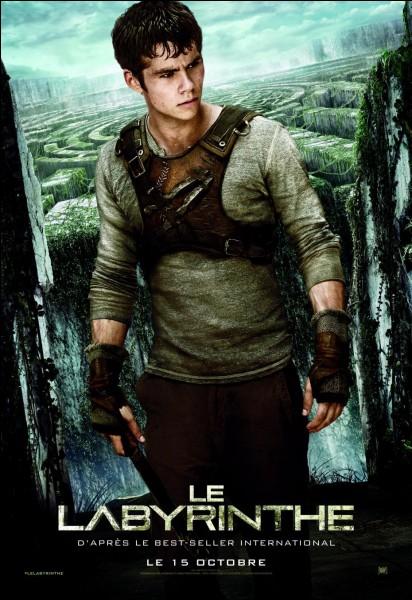 """Qui est le réalisateur du film """"Le Labyrinthe"""" ?"""
