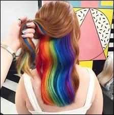 Tes cheveux seraient de couleur :