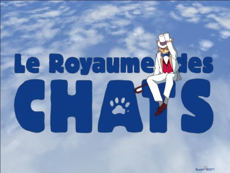 Pourquoi les chats ont-ils envie d'inviter Haru dans leur royaume ?