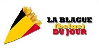 Pourquoi les Belges vont-ils dans l'avion tous nus ? (Bien sûr, si tu es Belge et que tu lis ce quizz débile, ne le prends pas pour toi !)