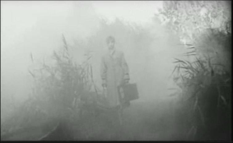 Dans quel clip pouvons-nous voir Mylène dans la brume ?