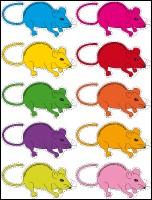 Quelle est la couleur de la souris de la comptine ?