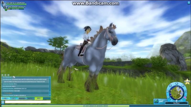 Ce cheval a un petit plus par rapport aux autres chevaux. C'est le...
