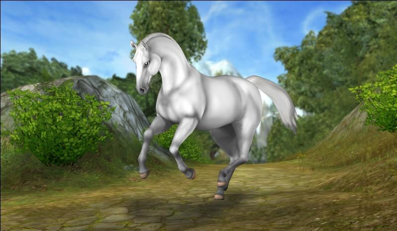 """Ce cheval sait accomplir une """"figure"""" autre que le cabré. C'est le..."""