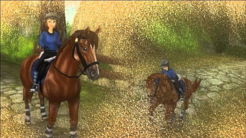 Ce cheval est capable de galoper aussi vite qu'un mustang. C'est le...