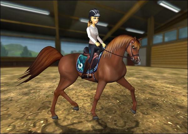 Ce cheval est très élégant en dressage mais est surtout bon en endurance. C'est le...