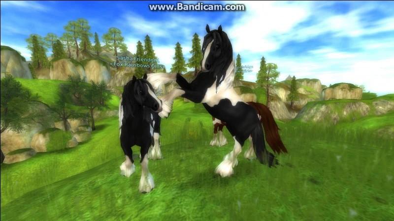 Ce cheval fait aussi partie des plus vieux du jeu. C'est le...
