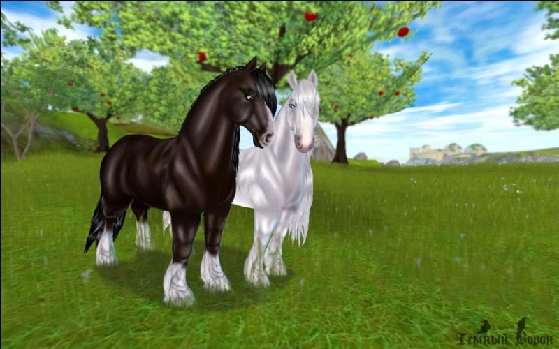 Ce cheval fait partie des plus grands du jeu. C'est le/l'...