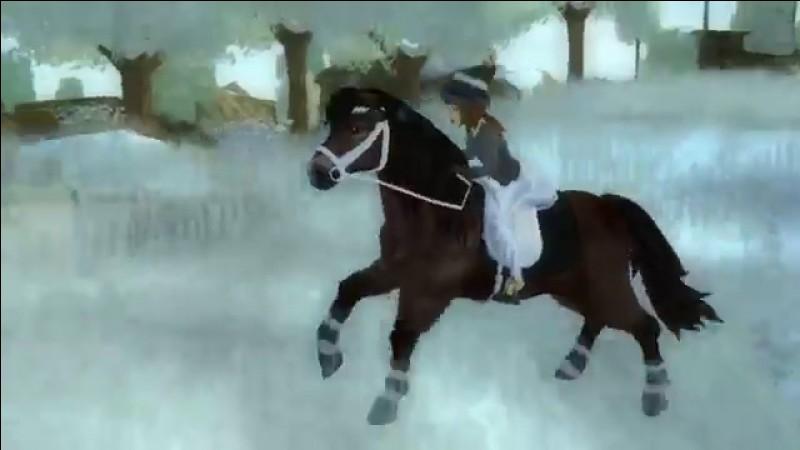 Cette race a une allure spéciale par rapport aux autres chevaux. C'est le/l'...