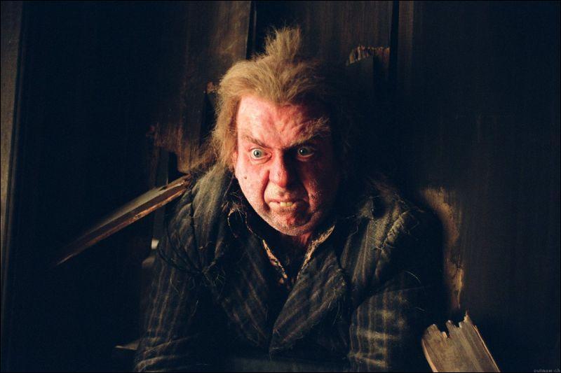 Qui est ce personnage qui a trahi les parents d'Harry Potter ?