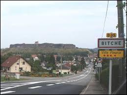 Pouvez-vous me donner le nom des habitants de Bitche (Moselle) ?