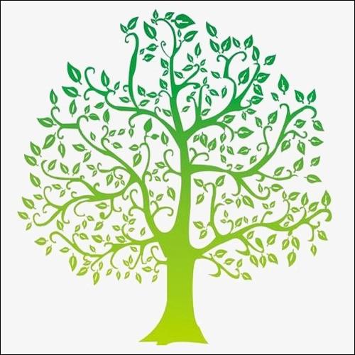 Quel est l'arbre préféré des intellos ?