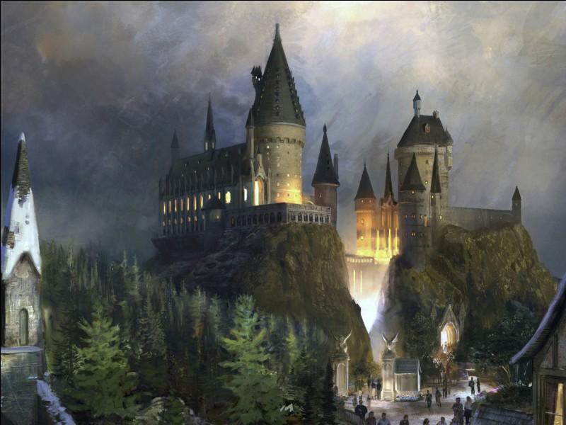 Dans quelle école Hermione est-elle ?