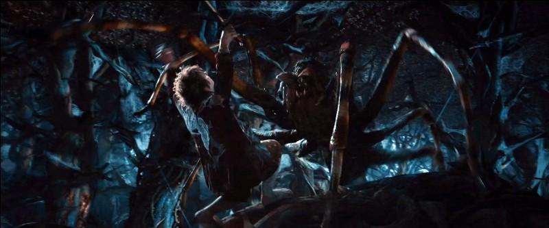 Dans quel film de J.R.R. Tolkien peut-on voir cette araignée ?